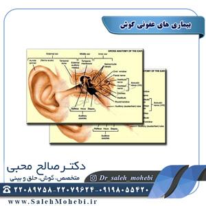 بیماری های عفونی گوش